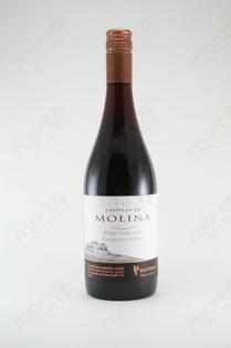 Castillo de Molina Reserva Pinot Noir 2006 750ml