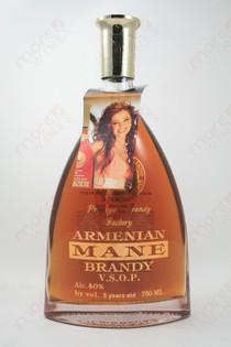 Mane V.S.O.P. Brandy 750ml