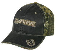 Dodge Ram Weathered Front/ Mossy Oak Back [Misc.]