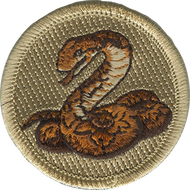 Anaconda Patrol Patch
