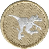 Ghost Raptor Patrol Patch