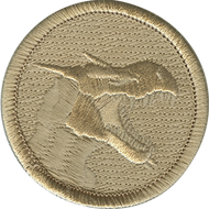 Official Licensed Ghost Dragon Patrol Patch