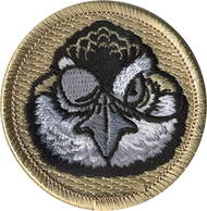 Bobwhite Pirate Patrol Patch