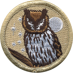 Wise owl patrol patch (#203).
