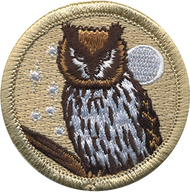 Starry Night Owl Patrol Patch