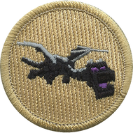 Endo Dragon Patrol Patch