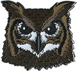 Wood Badge Owl Critter Head Pin