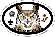 Wood Badge Owl Oval Magnet