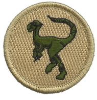 Ninja Raptor Patrol Patch