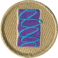 Wild Berry Toaster Pastry Patrol Patch