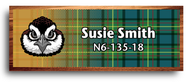 Wood Badge Bobwhite Tartan Starburst Name Tag
