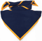 Navy with Gold Trim