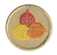 Evergreen Aspen Leaves Patrol Patch