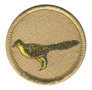 Aurora Patrol Patch