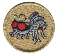 Flying Cowboys Patrol Patch