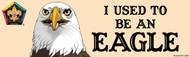 Wood Badge Eagle Bumper Sticker - Realistic (SP5063)