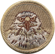 Official Licensed Hawk Patrol Patch