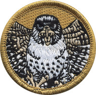 Official Licensed Premium Falcon Patrol Patch