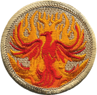 Official Licensed Phoenix Patrol Patch