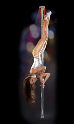 Fetish Fantasy Light-Up Disco Dance Stripper Pole