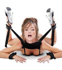 Fetish Fantasy Sex Position Master Restraints