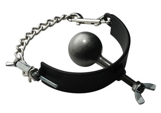 Pure Steel 2 Inch Ball Gag