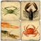 Crustacean Coaster Set. Handcrafted Marble Giftware by Studio Vertu.