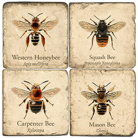 Vintage Bees Coaster Set