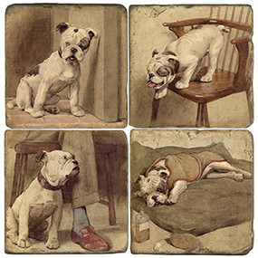 Illustrated Animal Coaster Set. Handcrafted Marble Giftware by Studio Vertu.