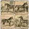 Equestrian Coaster Set. Handcrafted Marble Giftware by Studio Vertu.