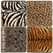 Animal Print Coaster Set
