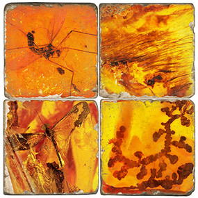 Amber Coaster Set Printed on Italian Marble