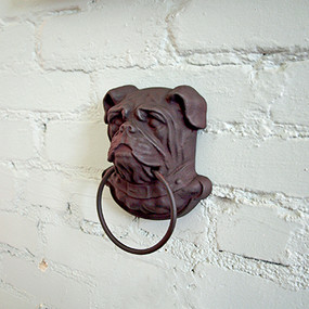 Wall Mounted Cast Iron Bulldog Head