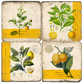 Botanical Lemon Coaster Set. Handmade Marble Giftware by Studio Vertu.