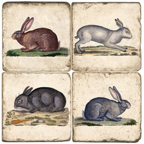 Rabbit Coaster Set