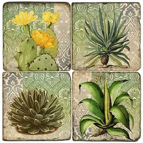 Succulents Coaster Set