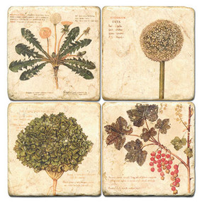 Weeds Coaster Set