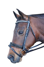 Regal Pearl Crank Hanoverian Bridle