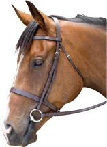 Flat Cavesson Bridle - SECONDS
