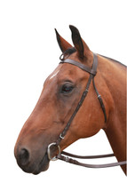 Plain Leather Bridle