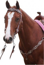 Horseshoe Bling Western Bridle