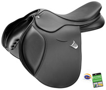 Bates Momentum Saddle With CAIR