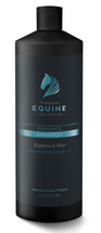 Pro Groom Equine Collection Enhance Shampoo 1L