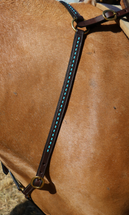 Calgary Buck Stitch Breastplate