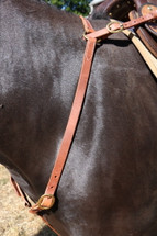 Calgary Leather Breastplate - B100