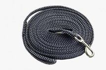 Two Toned Lunge Lead