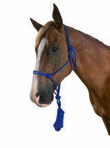Calgary Knotted Headstall & Lead Set