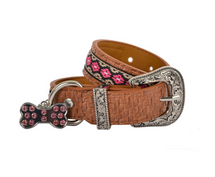Pure Western Halley Dog Collar