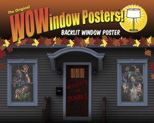 Zombie Asylum posters as seen in a house