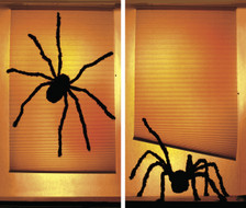 Shady spiders Halloween Window Poster Decorations